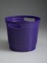 party-purple